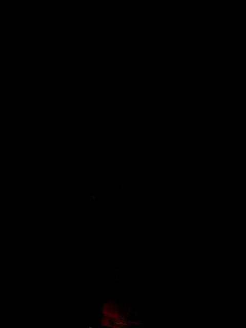 Картинки на телефон 240х320 с анимацией, новогодняя для девочки