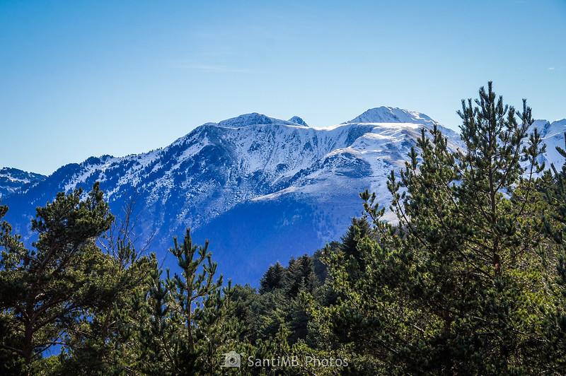 Montañas nevadas desde un claro del Bòsc de Varicauba