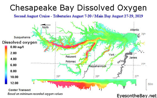 Image of Late August 2019 Chesapeake Bay Dissolved Oxygen monitoring map