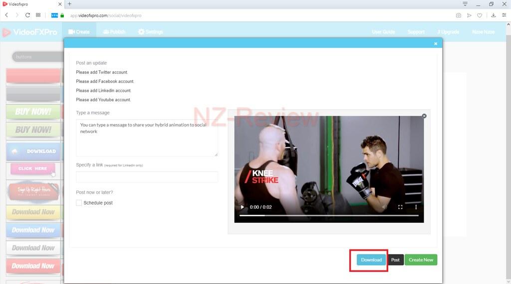 VideoFx Pro Review
